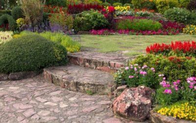 ¿Qué hacer en nuestro jardín el mes de mayo?