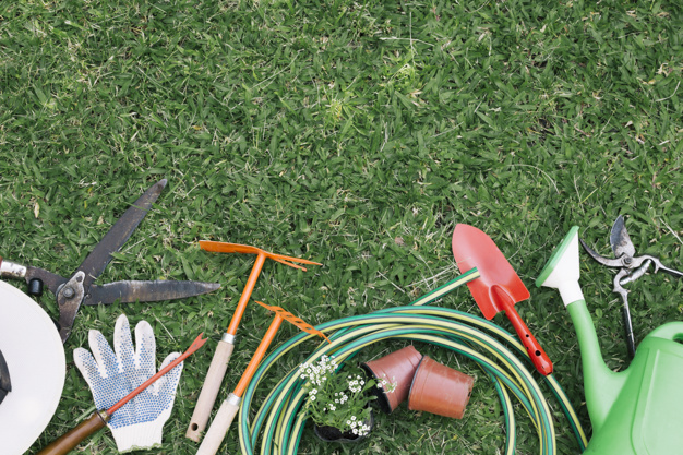 ¿Qué herramientas necesito para cuidar de mi jardín?