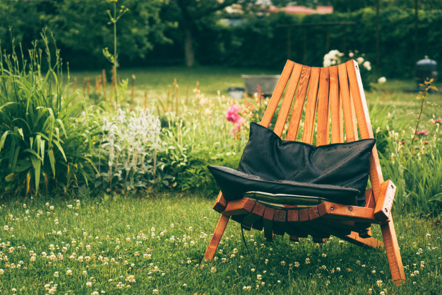 Tenir cura del jardí a l'estiu